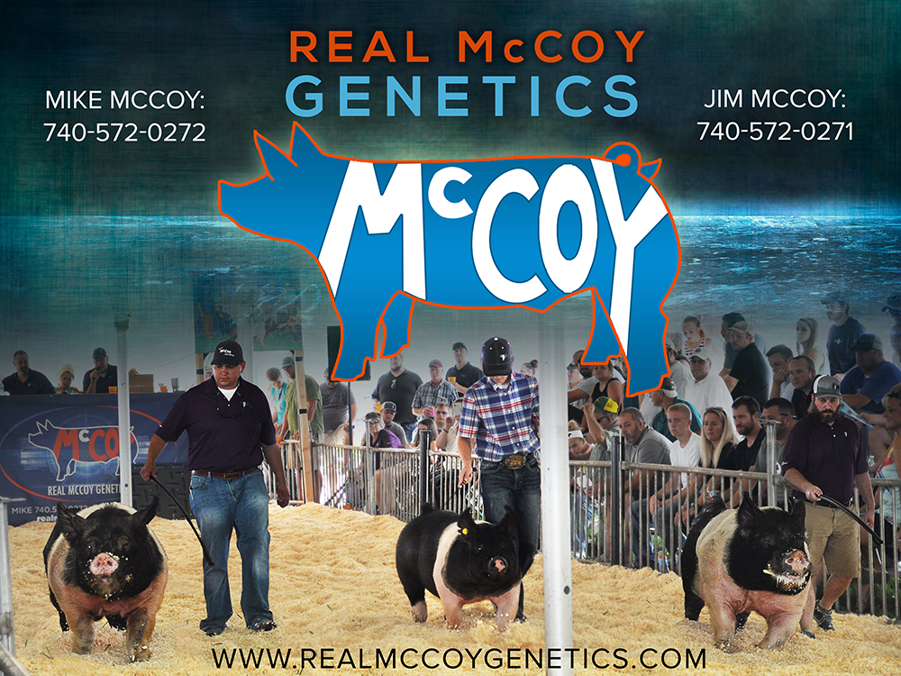 McCoy_Banner-DRAFT