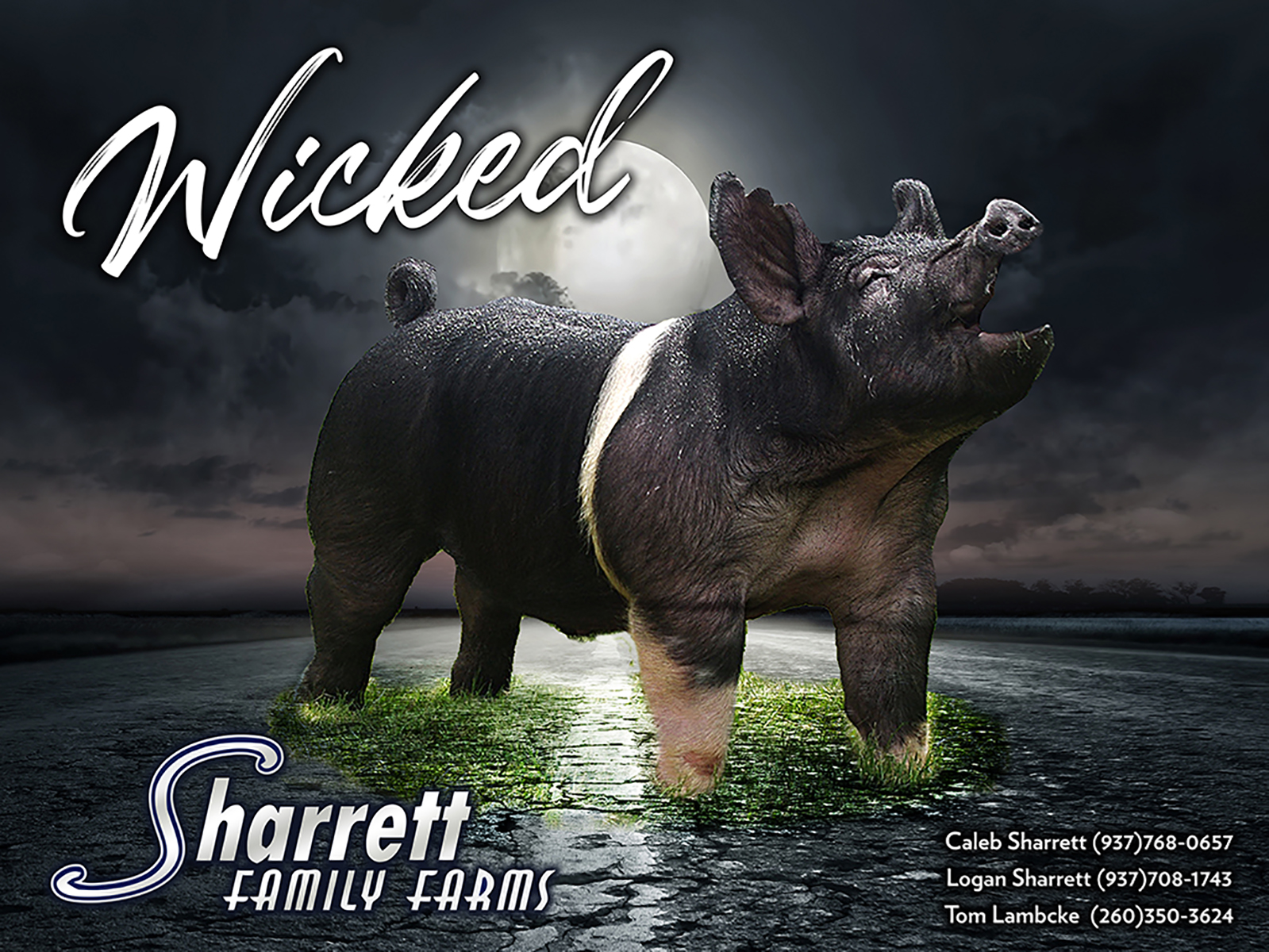 SharrettBanner19-Side2-Wicked_FINAL